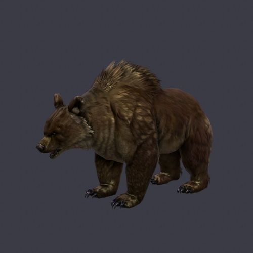 brown-bear3D model