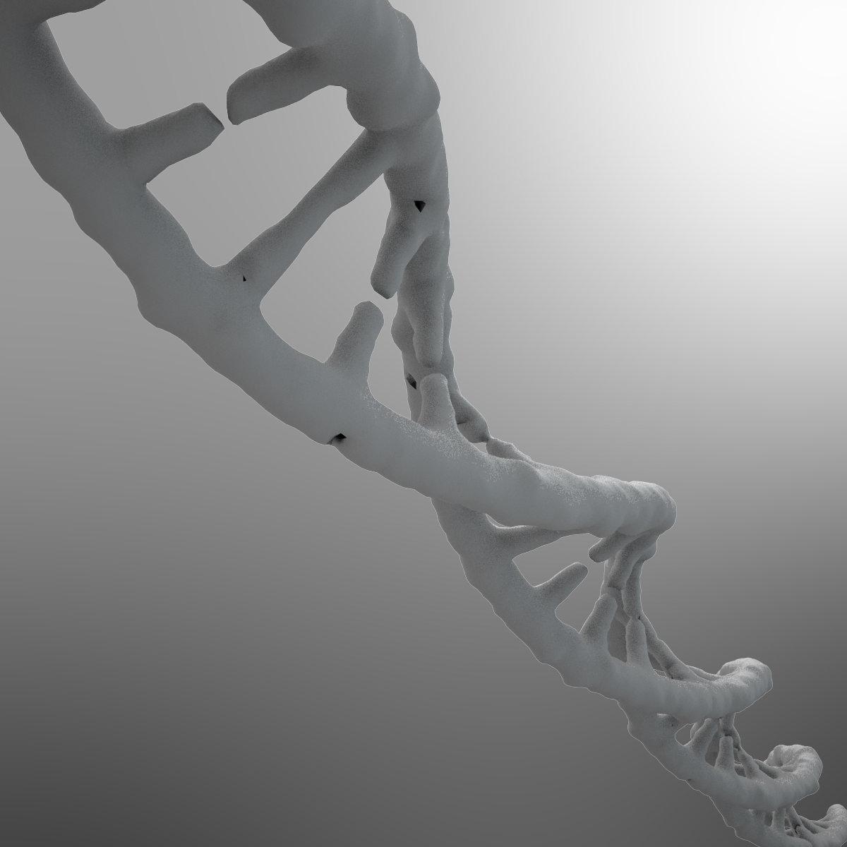 DNA Strand 3D Model .max .fbx .c4d .ma .mb