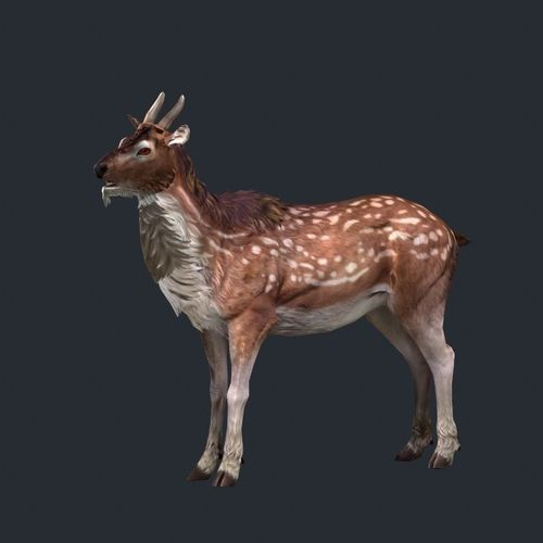 reindeer low poly 33D model