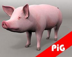 pig  3d 3D Model