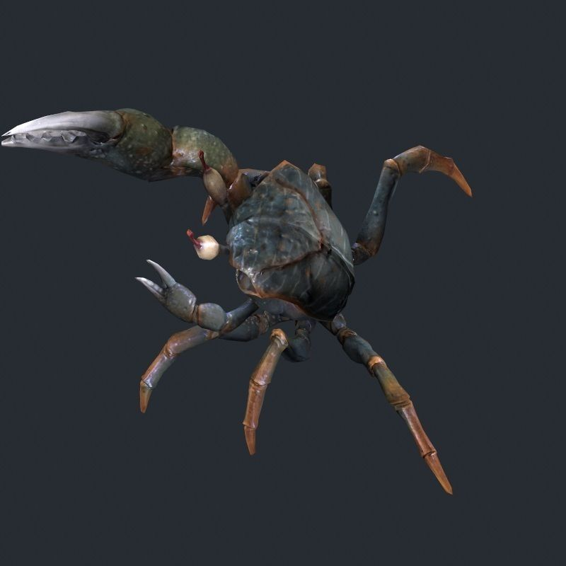 Sea crab low poly brown 3d model game ready max obj fbx for Crab fishing game