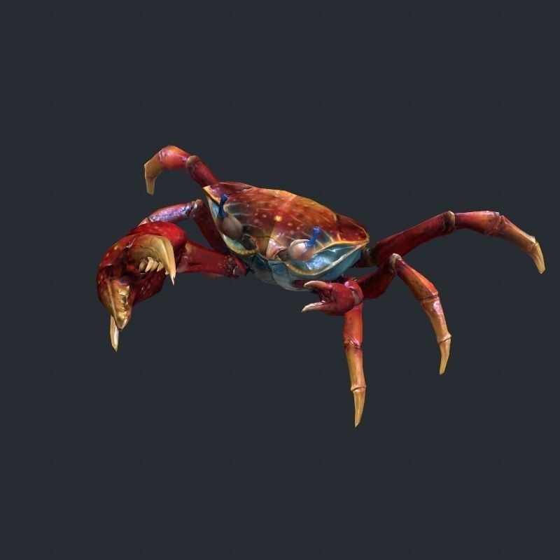 Sea crab low poly 3d model game ready max obj fbx for Crab fishing game