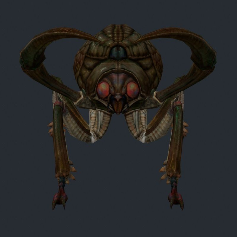 Insect Monster 2 3d Model Game Ready Max Obj Fbx