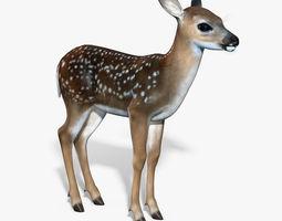 Fawn Baby Deer 3D Model