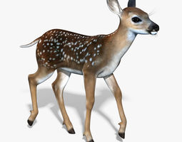 Fawn Baby Deer RIGGED 3D Model