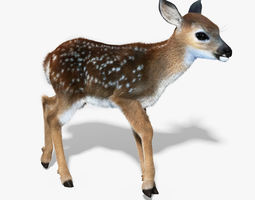 Fawn Baby Deer FUR RIGGED 3D Model