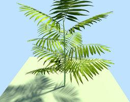 ju ngle plant 3D Model