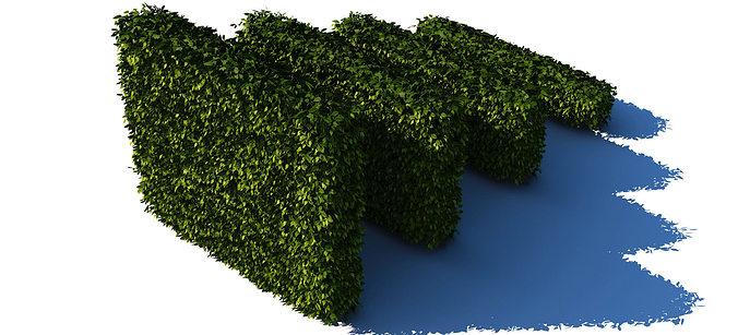 hedges collection 3d model max obj fbx c4d mtl 1
