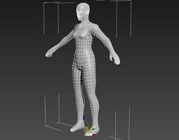 3D model Female Anatomy basemesh