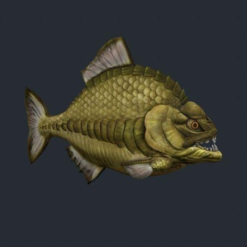 Piranha 33D model
