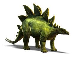 3D asset Stegosaurus