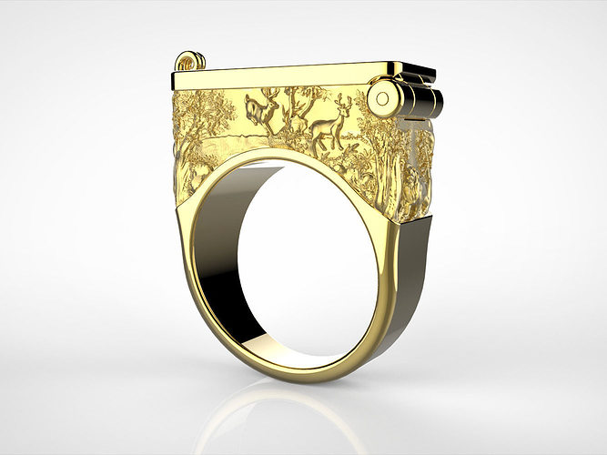 Secret Compartment ring with relief