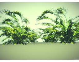 low poly jungle plant 3D asset