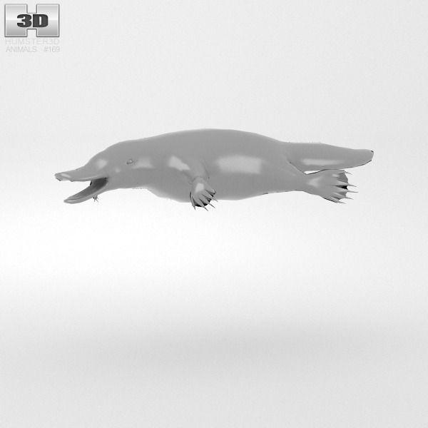 Platypus 3D Model MAX OBJ 3DS FBX C4D LWO LW LWS