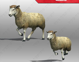 Sheep Animated 3D model