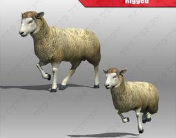 3d sheep rigged