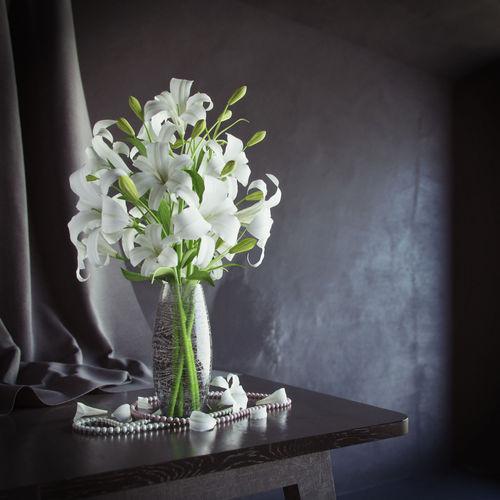 Lily in vase3D model
