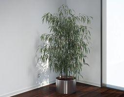 VP Oleander 3D model