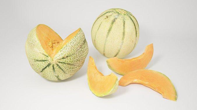 vp cantaloupe melon 3d model max obj mtl fbx 1