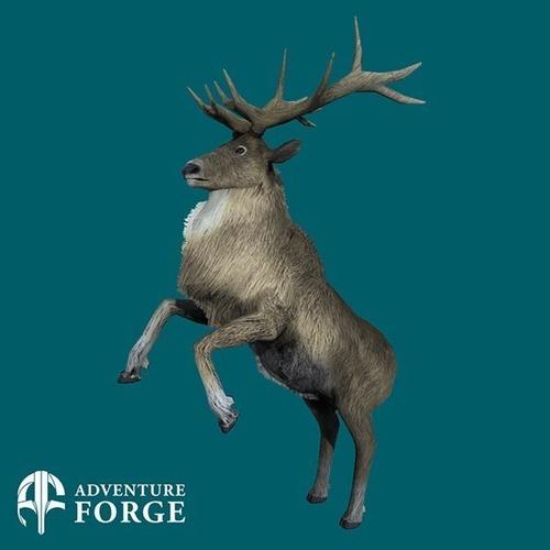 Nordic Deer3D model