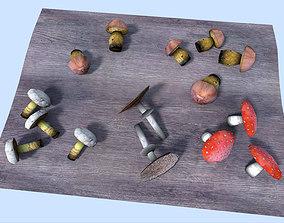 shrooms collection 3D asset