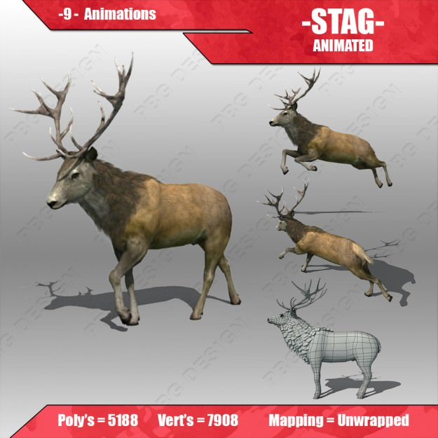 Stag Animated