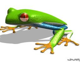 Rigged Tree Frog Agalychnis Callidryas 3D Model