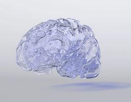 3D asset Free Brain Model made of glass