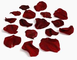 Rose Petals extended rebuild 3D Model
