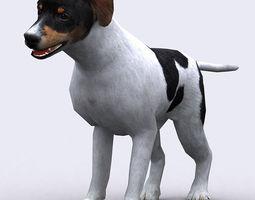 3DRT - Dog  3D Model