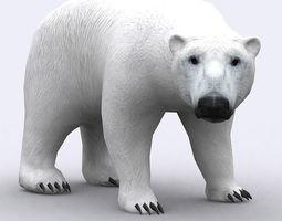 3DRT - Polar Bear 3D Model