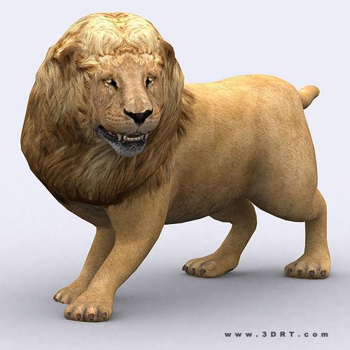 3DRT - Lion3D model
