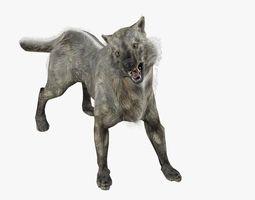 Wild Wolf 3D Model