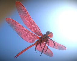 low-poly animated dragonfly 3d asset
