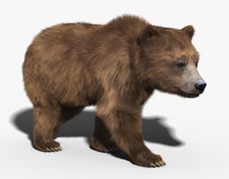 brown bear fur rigged 3d model rigged animated max obj fbx