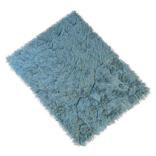 Carpet 013D model