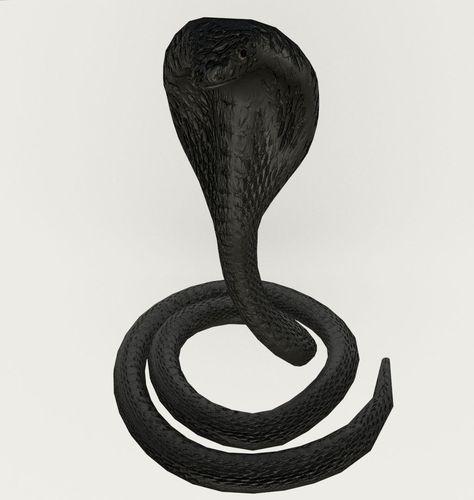 snake3D model