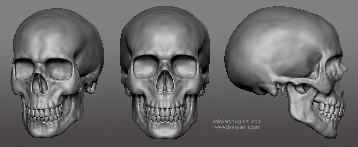 skull ZTL