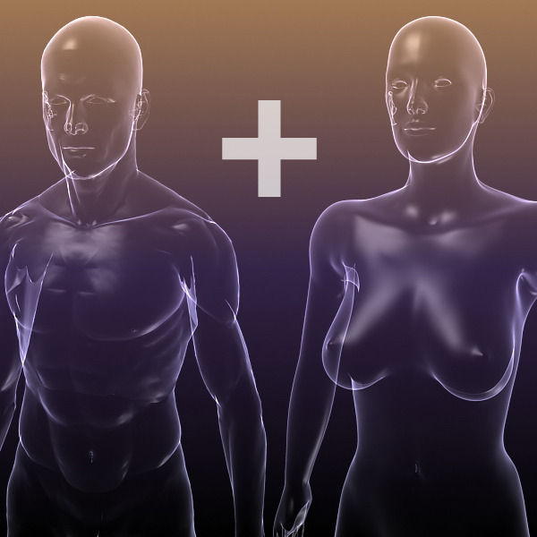 3d Model Male And Female Anatomy Transparent Bodies Vr Ar Low