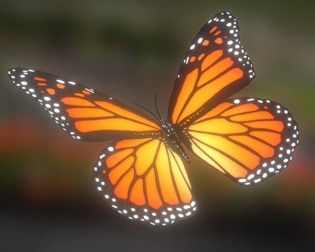 animated butterfly 3d model low-poly animated fbx tga 1