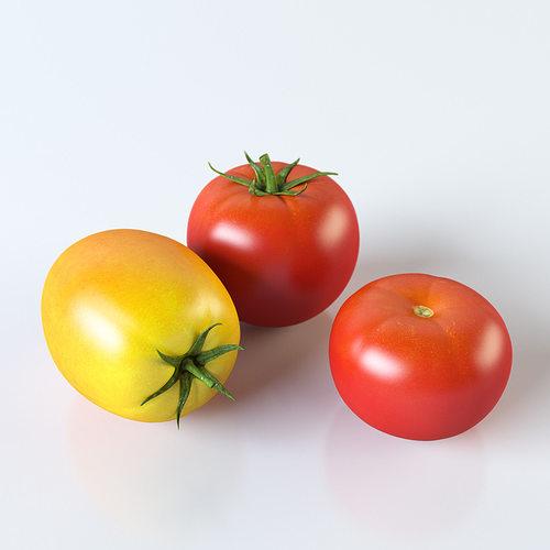tomatoes 3d model max obj mtl 3ds fbx stl unitypackage prefab 1