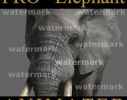 pro elephant animated - 3d model animated