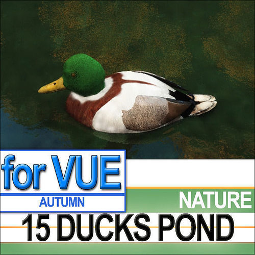 15 ducks 15 pond ducks and set 3d model vue 1