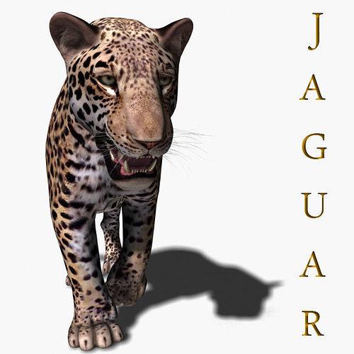 realistic jaguar - no fur 3d model 3d model rigged animated max obj mtl fbx 1
