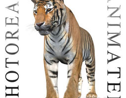 animated The Ultimate CGI Tiger - no fur 3d