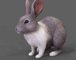 rabbit 3D asset realtime