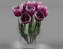 3D a bouquet of tulips