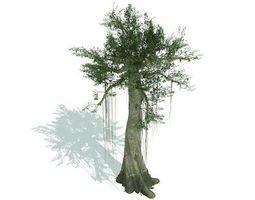3D Kapok Tree