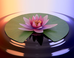 Waterlily with Leaf 3D Model