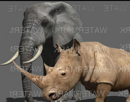animated African heavy pack - 3d model